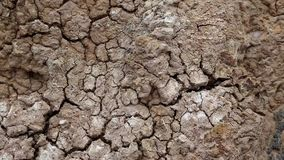 Yellow soil with cracks stock video footage