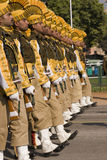 Yellow Soldiers Royalty Free Stock Photos
