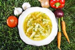 Yellow soup with macaroni on grass Royalty Free Stock Photos