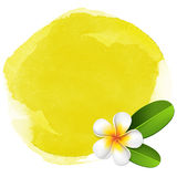 Yellow spa watercolor background Royalty Free Stock Photography