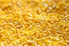 Yellow splintered corn Royalty Free Stock Photography