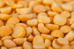 Yellow split mustard seeds for backgrounds or textures, healthy food.  royalty free stock images