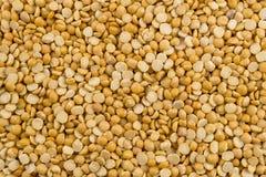Yellow Split Pea Background. Heap of yellow split peas, background Stock Photos