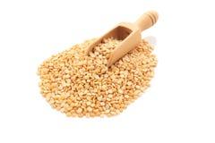Yellow split peas  wood scoop Royalty Free Stock Image