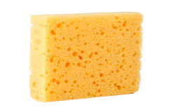 Yellow sponge Stock Images