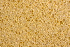Yellow Sponge Royalty Free Stock Images