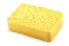 Yellow Sponge Royalty Free Stock Photo