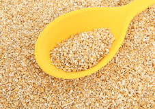 Yellow Spoon In Raw Oatmeal Stock Photography