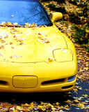 Yellow Sportscar. A sports car covered in leaves Royalty Free Stock Image