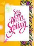 Yellow spring background with hummingbirds and butterflies. Royalty Free Stock Images