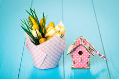 Yellow Spring Crocus and birdhouse Royalty Free Stock Photo