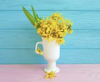Yellow spring flowers easter vintage border seasonal on blue wooden background. Yellow spring flowers blue wooden background seasonal border vintage easter royalty free stock photography