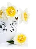 Yellow spring flowers in bucket Stock Photos