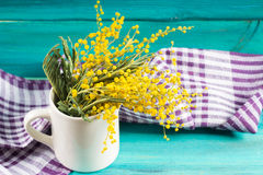 Yellow spring flowers of mimosa in a white mug on a blue wooden background. Stock Photography