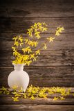 Yellow spring flowers on old wooden background. The yellow spring flowers on old wooden background Royalty Free Stock Images