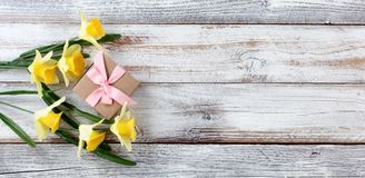 Yellow daffodils and gift box on white weathered wooden boards Stock Photography