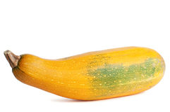 Free Yellow Squash Royalty Free Stock Images - 13422449