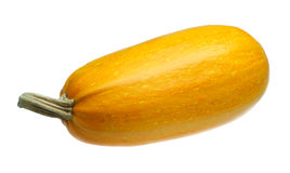 Yellow squash Royalty Free Stock Photos