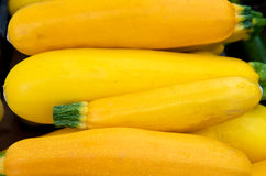 Yellow Squash Stock Photos