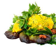 Yellow Squash Pattypan with different lettuce, water-cress, spin Royalty Free Stock Image