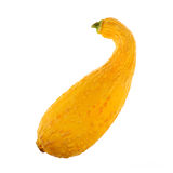 Yellow squash on white Stock Photography