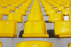Yellow stadium seats. A field of yellow stadium seats Royalty Free Stock Image