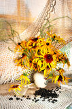 Yellow still life Royalty Free Stock Images
