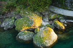 Yellow stone background. Yellow and green stones in a crossing river, background Royalty Free Stock Photo