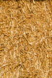 Yellow Straw Bale in Summer Royalty Free Stock Images
