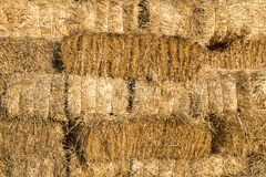 Yellow straw bale wall texture background Stock Photography