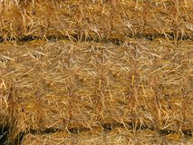 Yellow straw is pressed into huge round bales .Texture or background. Straw was pressed into large bales lying on top of each other.Texture or background royalty free stock photo