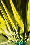 Yellow Streaks. Of neon light created by slow shutter speed Royalty Free Stock Photos