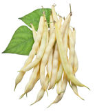 Yellow string beans isolated on a white. Royalty Free Stock Image