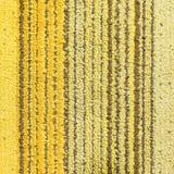 Yellow Stripe Carpet Royalty Free Stock Photos