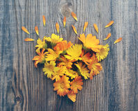 Yellow summer flowers in the form of heart on a wooden board Stock Photography