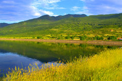 Yellow summer grass mountain lake Stock Images