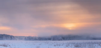 Yellow sun rising over mist in winter. Gorgeous winter sky in warm tones. Frosty winter dawn. Misty panoramic background Royalty Free Stock Images