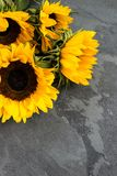 Yellow Sunflower Bouquet on Grey Grunge Background, Autumn Conce Stock Photos