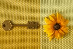 Yellow sunflower and brass key on woven textile royalty free stock image