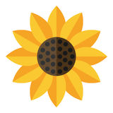 Yellow Sunflower Flat Icon Isolated on White. Yellow sunflower flat icon, isolated on white background. Eps file available Stock Photos