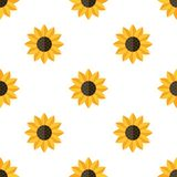 Yellow Sunflower Flat Icon Seamless Pattern. A seamless pattern with a yellow sunflower flat icon, isolated on white background. Useful also as design element Royalty Free Stock Photography