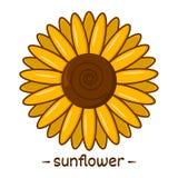 Yellow sunflower icon. Vector illustration. Yellow sunflower icon isolated. Vector illustration vector illustration