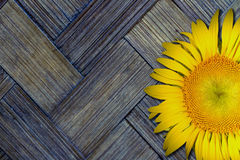 Yellow sunflower on old textured bamboo background Royalty Free Stock Photography