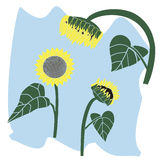 Yellow sunflower. Vector illustration logo for yellow sunflower.Isolated in the drawing,is composed of flower plant green leaf,stem seeds blue sky,white Royalty Free Stock Image