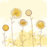 Yellow sunflower on Watercolor background. Royalty Free Stock Image