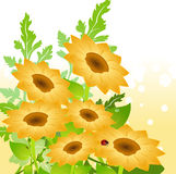 Yellow sunflowers. Vector illustration of bright yellow sunflowers on Abstract floral background Stock Photo