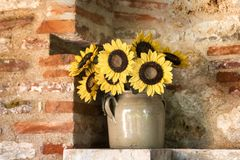 Yellow sunflowers bouquet Stock Photography