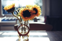 Yellow Sunflowers in Clear Glass Jar during Daytime Stock Images
