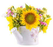 Yellow sunflowers and colored wild flowers in a white sprinkler, close up Stock Images