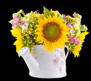 Yellow sunflowers and colored wild flowers in a white sprinkler, close up Royalty Free Stock Image